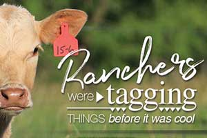 Ranchers were 'tagging' things before it was cool